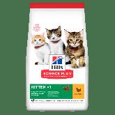 Hill's Kitten Development