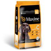 Maxine Cachorro