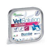 Paté Vet Solution perro recovery 150g
