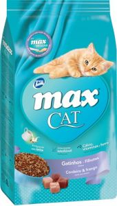 Max Gato Filhote